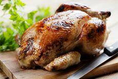 Из чего и как готовят фаст-фуды и курицу гриль, вред фаст-фуда и курицы-гриль