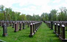 К чему снится кладбище и могилы, гулять по кладбищу, ухаживать за могилой? основные толкования - к чему снится кладбище и могилы