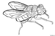 К чему снятся мухи в воздухе, на одежде, на теле. к чему снится много мух по разным сонникам – разные толкования