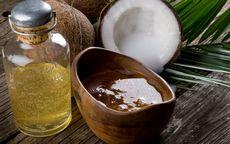 Кокос: состав, польза и свойства кокоса