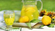 Лимонный сок: похудение, лечение соком лимона