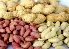 Орех арахис: состав, польза и свойства арахиса, вред арахиса, арахисовая диета