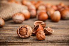 Орехи фундук: состав, польза и свойства фундука