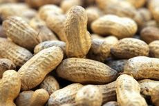 Орехи. польза орехов: миндаль, грецкий орех, макадамия, арахис, бразильский орех