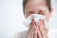 Основные бытовые аллергены