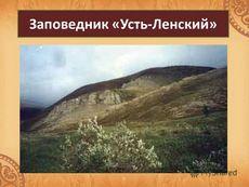 Праздник 11 января - день заповедников и национальных парков