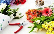 Продлеваем жизнь срезанных цветов