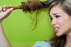 Простые решения для проблемных волос: сухие, поврежденные и непослушные волосы