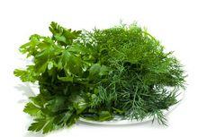 Укроп: свойства, лечение укропом, кулинарное применение