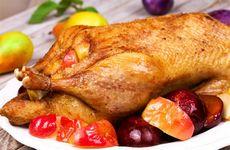 Утиное мясо, состав, польза и вред, низкокалорийные блюда из утки